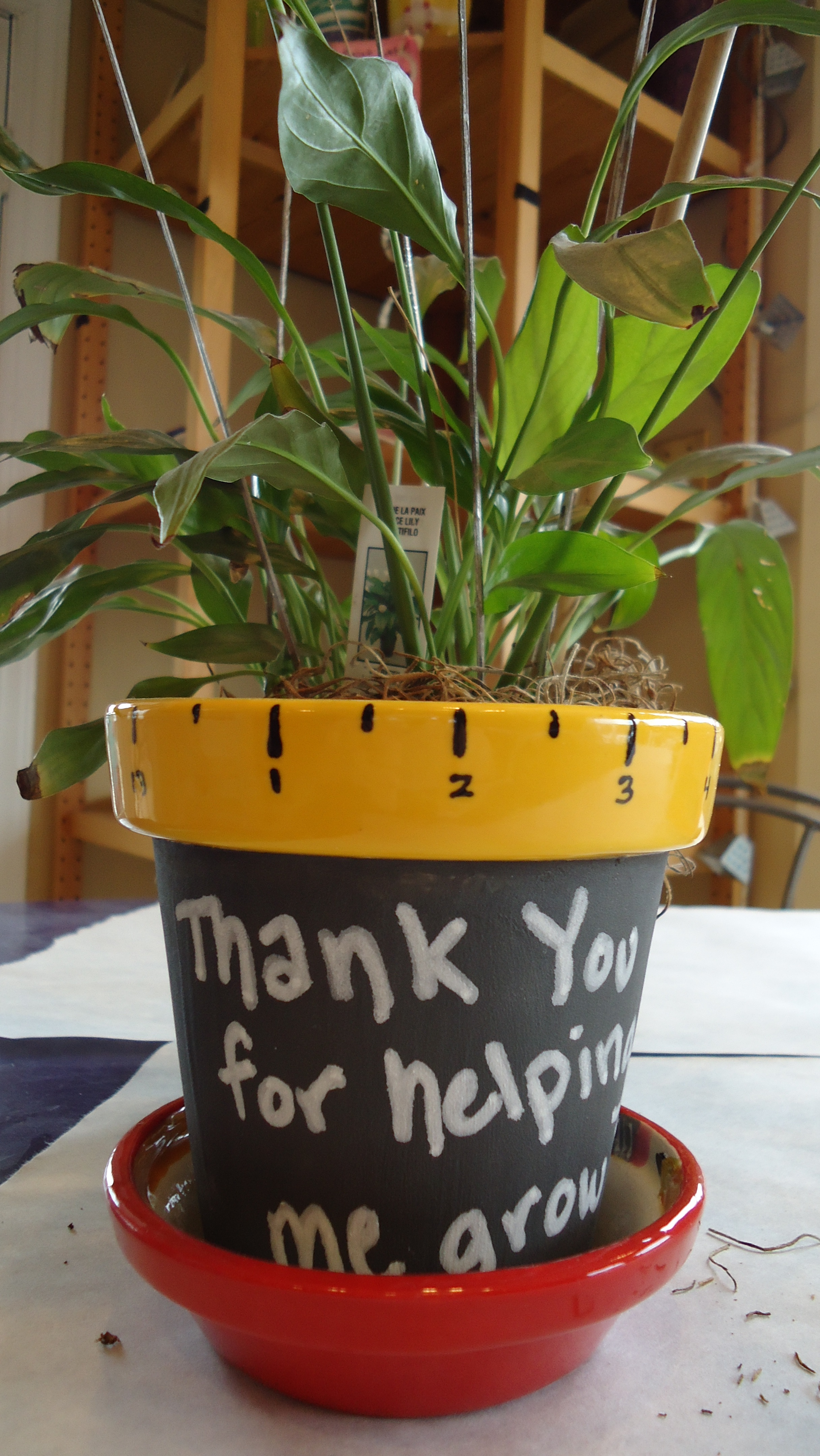 Thanks For Helping Me Grow Flower Pot All Fired Up