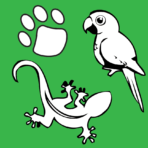 Animal Planet (June 19 – 23)